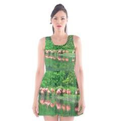 Flamingos Nature Green Pink Scoop Neck Skater Dress
