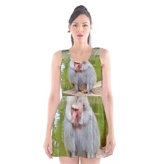 Grey Monkey  Scoop Neck Skater Dress