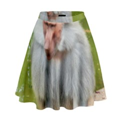 Grey Monkey  High Waist Skirt