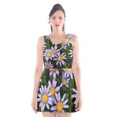 Yellow White Daisy Flowers Scoop Neck Skater Dress