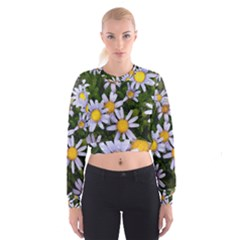 Yellow White Daisy Flowers Women s Cropped Sweatshirt