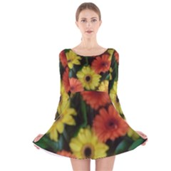 Orange Yellow Flowers Long Sleeve Velvet Skater Dress