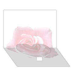 Pink White Love Rose Heart Bottom 3D Greeting Card (7x5)