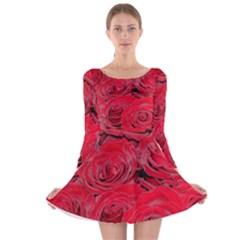 Red Love Roses Long Sleeve Velvet Skater Dress