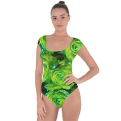 Festive Green Glitter Roses Valentine Love  Short Sleeve Leotard (ladies)