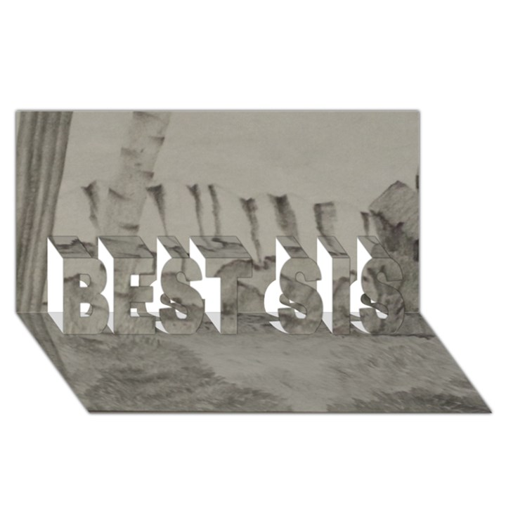 Peace In The Valley  BEST SIS 3D Greeting Card (8x4)