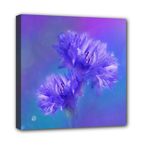 Flowers Cornflower Floral Chic Stylish Purple  Mini Canvas 8  x 8