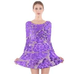 Festive Chic Purple Stone Glitter  Long Sleeve Velvet Skater Dress