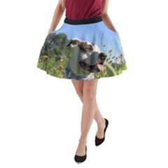Pit Bull T Bone A-Line Pocket Skirt