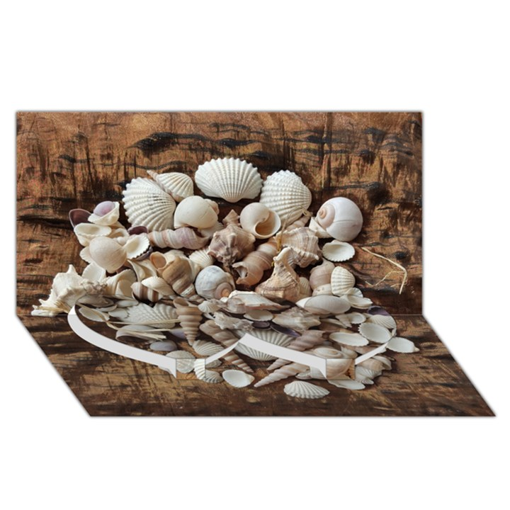 Tropical Sea Shells Collection, Copper Background Twin Heart Bottom 3D Greeting Card (8x4)