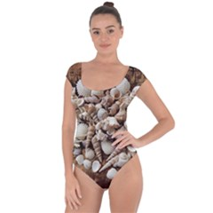 Tropical Sea Shells Collection, Copper Background Short Sleeve Leotard (Ladies)