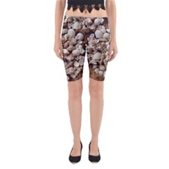 Tropical Sea Shells Collection, Copper Background Yoga Cropped Leggings