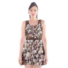 Tropical Sea Shells Collection, Copper Background Scoop Neck Skater Dress