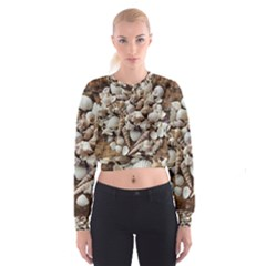 Tropical Sea Shells Collection, Copper Background Women s Cropped Sweatshirt