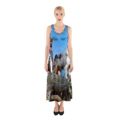 2 Australian Shepherds Sleeveless Maxi Dress
