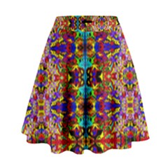 Psychic Auction High Waist Skirt
