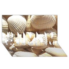 Tropical Exotic Sea Shells #1 MOM 3D Greeting Cards (8x4)