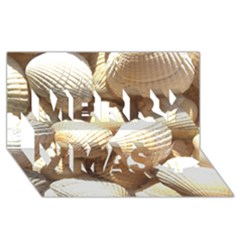 Tropical Exotic Sea Shells Merry Xmas 3D Greeting Card (8x4)