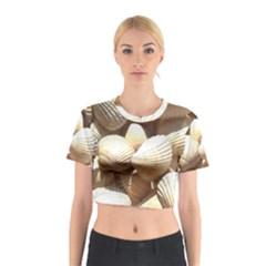 Tropical Exotic Sea Shells Cotton Crop Top