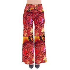 Flame Delights, Abstract Red Orange Pants