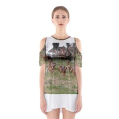 Bloodhounds Working Cutout Shoulder Dress