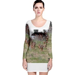 Bloodhounds Working Long Sleeve Velvet Bodycon Dress
