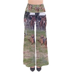 Bloodhounds Working Pants