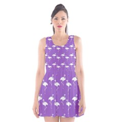 Flamingos Pattern White Purple Scoop Neck Skater Dress