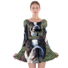 Boston Terrier Long Sleeve Skater Dress