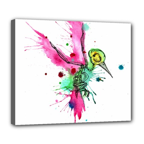 Hummingbird Skeleton Deluxe Canvas 24  X 20
