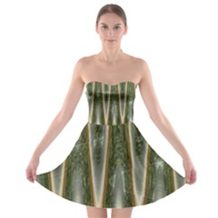 Green Brown Zigzag Strapless Dresses