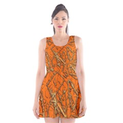 Thorny Abstract, Orange Scoop Neck Skater Dress