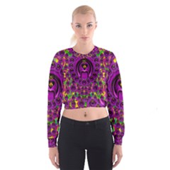 Love For The Fruit And Stars In The Milky Way Women s Cropped Sweatshirt