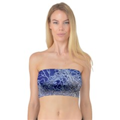 Crystalline Branches Bandeau Top