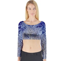 Crystalline Branches Long Sleeve Crop Top