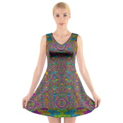 Peacock Eyes In A Contemplative Style V-Neck Sleeveless Skater Dress
