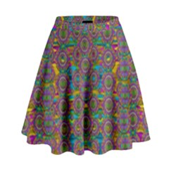 Peacock Eyes In A Contemplative Style High Waist Skirt