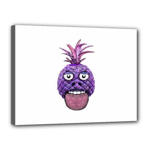 Funny Fruit Face Head Character Canvas 16  x 12