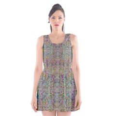 Colors For Peace And Lace In Rainbows In Decorative Style Scoop Neck Skater Dress
