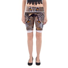 Great Horned Owl 1 Yoga Cropped Leggings