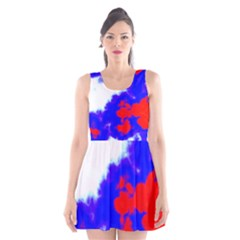 Red White And Blue Sky Scoop Neck Skater Dress