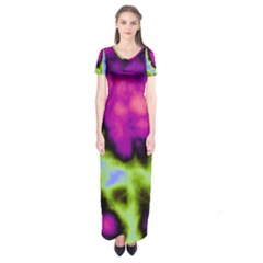 Insane Color Short Sleeve Maxi Dress