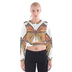 Butterfly Women s Cropped Sweatshirt
