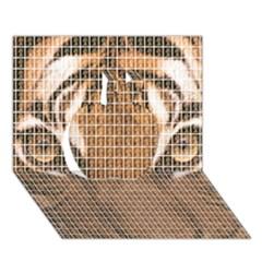 Tiger Tiger Apple 3D Greeting Card (7x5)
