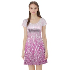 Pink Ombre Feather Pattern, White, Short Sleeve Skater Dress