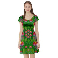 Orchid Forest Filled Of Big Flowers And Chevron Short Sleeve Skater Dress