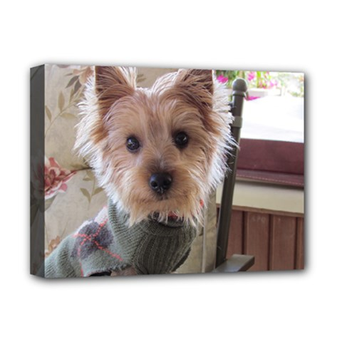 Tea Cup Yorkie Deluxe Canvas 16  x 12