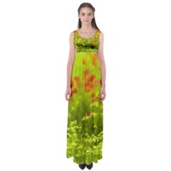 Poppy I Empire Waist Maxi Dress