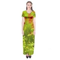 Poppy I Short Sleeve Maxi Dress