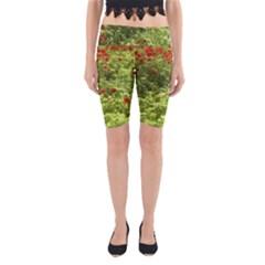 Poppy V Yoga Cropped Leggings